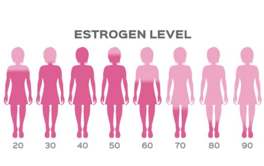 estrogen dominance
