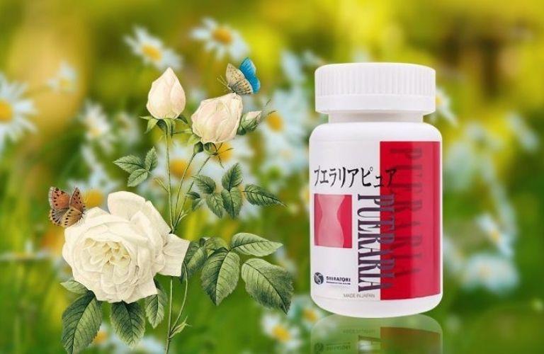 Thuốc tăng nội tiết tố nữ Pueraria Pure