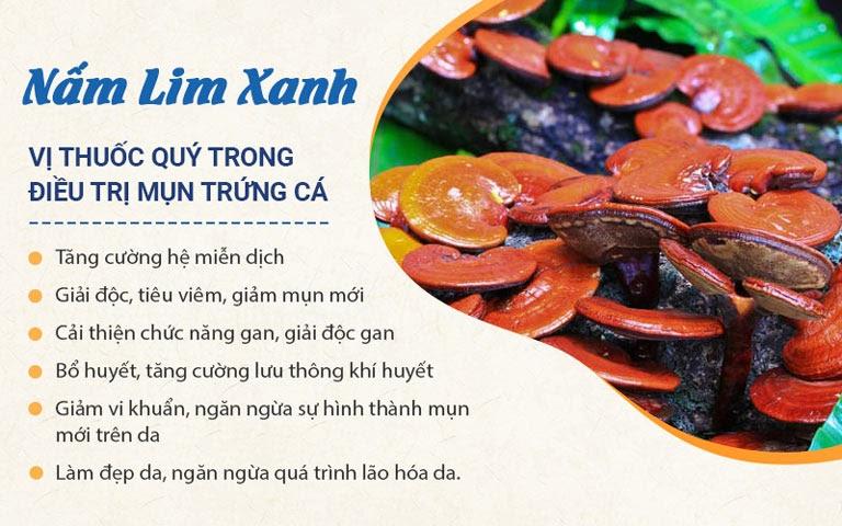 Nấm lim xanh là vị thảo dược quý được bổ sung trong Bộ sản phẩm Trị Mụn trứng cá Hoàn Nguyên thế hệ 2