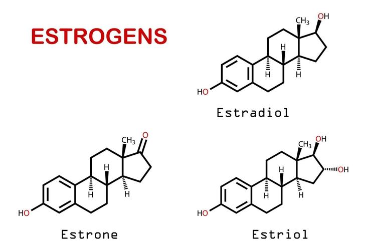 Estradiol và Progesterone là các nội tiết tố nữ đảm bảo sự phát triển giới tính và duy trì chu kỳ kinh nguyệt trong độ tuổi sinh sản ở nữ giới.