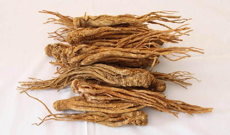 Đương quy - loại thảo dược quý với nhiều công dụng trong việc điều trị các bệnh viêm nhiễm phụ khoa